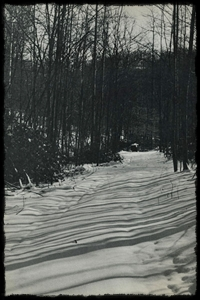 Snowy Road by Thomas Merton